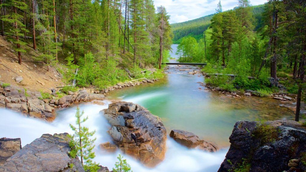 صورة للمنتزه الوطني في دولة فنلندا