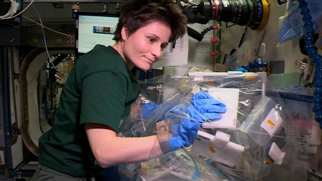 ذبابة دروسوفيلا هي اول حيوان تم ارساله للفضاء